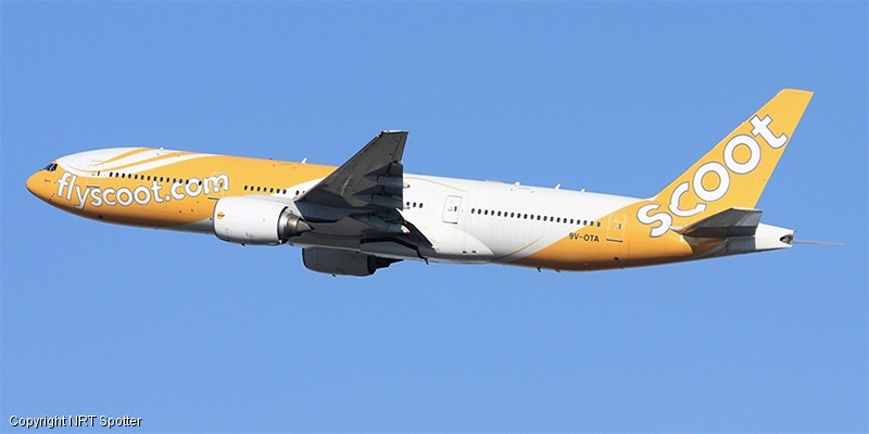 scoot airlines - photo #12